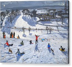 Winter Fun Acrylic Print by Andrew Macara