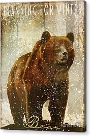 Winter Game Bear Acrylic Print by Mindy Sommers