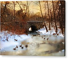 Winter Geese Acrylic Print by Jessica Jenney