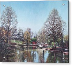 Acrylic Print featuring the painting Winter Hilliers Garden Hampshire by Martin Davey