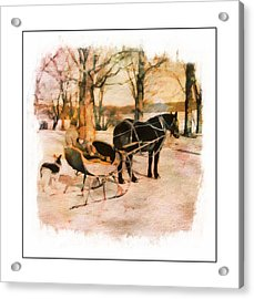 Winter Horse Sled Acrylic Print