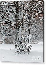 Winter Hush Acrylic Print by Diane E Berry