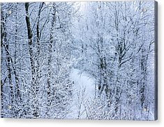 Winter Ice Storm Acrylic Print