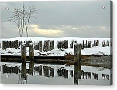 Winter In Birch Bay Acrylic Print by Matthew Adair