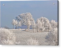 Winter In Canada Acrylic Print by Christine Till