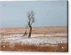 Winter In Kansas Acrylic Print