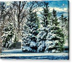 Winter In New England Acrylic Print by Judy Palkimas
