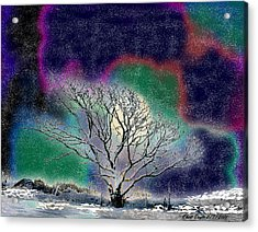 Winter In Oklahoma 2011 Acrylic Print