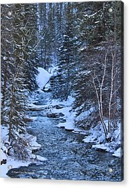 Winter In The Black Hills Acrylic Print by Dave Clark