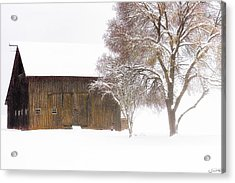 Winter In The Country Acrylic Print
