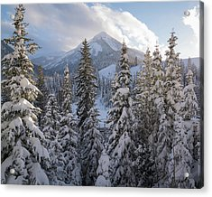 Winter In The Wasatch Acrylic Print