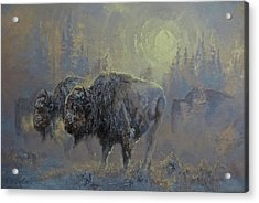 Winter In Yellowstone Acrylic Print by Mia DeLode