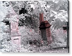 Winter Infrared Cemetery Acrylic Print by Helga Novelli