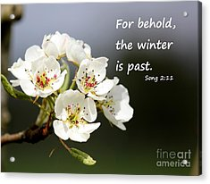 Winter Is Past Acrylic Print