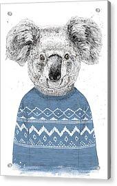 Winter Koala Acrylic Print