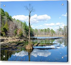 Winter Lake View Acrylic Print by George Randy Bass
