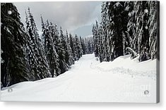 Acrylic Print featuring the photograph Winter Landscape by Bill Thomson