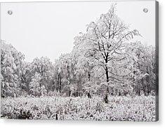 Acrylic Print featuring the photograph Winter Landscape by Gabor Pozsgai