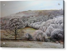 Winter Landscape Acrylic Print by Harry Robertson