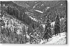 Winter Landscape In Giurgeu Mountains Acrylic Print by Gabriela Insuratelu