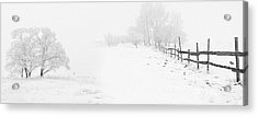 Winter Landscape - Pray For Snow Acrylic Print by Celestial Images