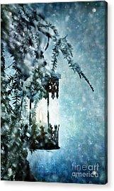 Winter Lantern Acrylic Print by Stephanie Frey