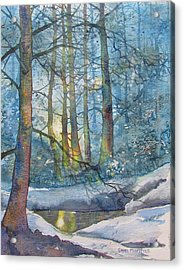 Winter Light In The Forest Acrylic Print