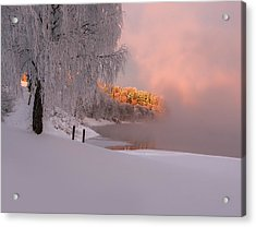 Winter Light Acrylic Print by Rose-Maries Pictures