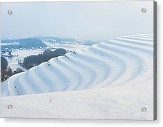 Winter Lines Acrylic Print