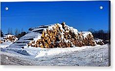 Winter Logs Acrylic Print