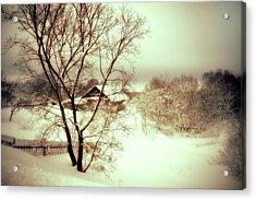 Winter Loneliness Acrylic Print