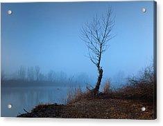 Winter Loner Acrylic Print