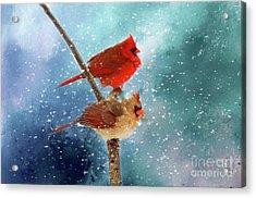 Winter Love Acrylic Print