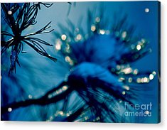 Acrylic Print featuring the photograph Winter Magic by Susanne Van Hulst