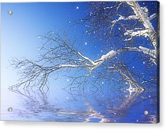 Winter Magic Acrylic Print by Trudy Wilkerson