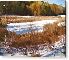 Acrylic Print featuring the photograph Winter Marsh by Betsy Zimmerli