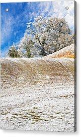 Winter Acrylic Print by Meirion Matthias