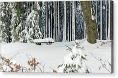 Winter Moments In Harz Mountains Acrylic Print