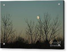 Acrylic Print featuring the photograph Winter Moon by Ana V Ramirez