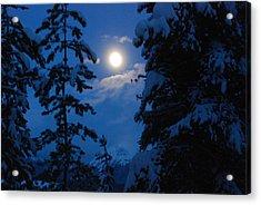 Winter Moonlight Acrylic Print