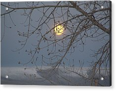 Acrylic Print featuring the photograph Winter Mornings by Al Swasey