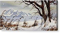 Winter Mountain Vista Acrylic Print by James Williamson