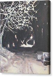 Winter Night Acrylic Print by Donna Lange