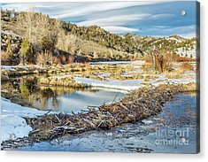Winter On Beaver Swamp Acrylic Print by Marek Uliasz