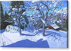 Winter Orchard  Morzine Acrylic Print by Andrew Macara