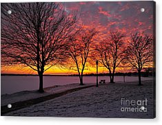 Acrylic Print featuring the photograph Winter Park by Terri Gostola
