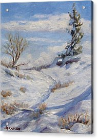 Winter Path Acrylic Print by Debra Mickelson