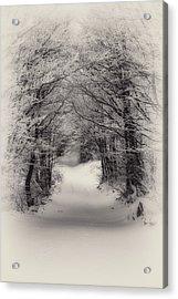 Winter Path Acrylic Print