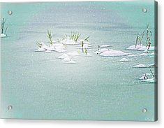 Acrylic Print featuring the photograph Winter Pond by Dee Browning
