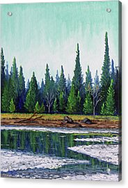 Winter Pond Acrylic Print